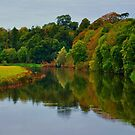 Reflections of an autumn evening. by Finbarr Reilly