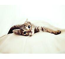 Sleepy head Photographic Print