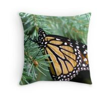 Monarch In A Spruce  Throw Pillow