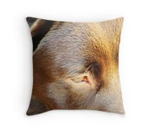 The Color and Texture of the Lab Throw Pillow