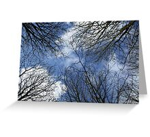 Natural windows trough branches Greeting Card