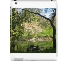Peaceful garden iPad Case/Skin