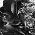 Flower Pot by hynek