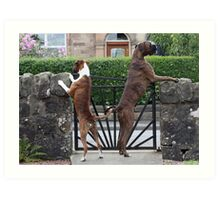 Guard Dogs Art Print