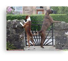 Guard Dogs Metal Print