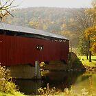 Rice's Bridge by Cassy Greenawalt
