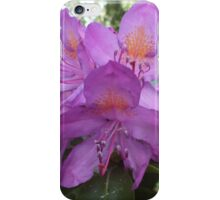 Riotous Lilac Rhododendron iPhone Case/Skin