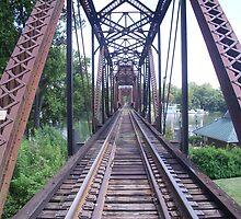 Railroad over the Savannah by raggedyann