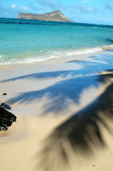 Kaiona Beach by Naomi Hayes
