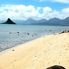 Chinaman's Hat by Naomi Hayes