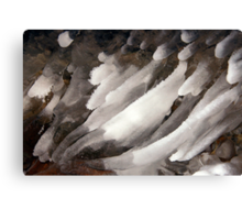 Icy Fingers Canvas Print