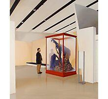 Museum VI (Four Primates) Photographic Print