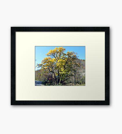 Oldtimer! Framed Print