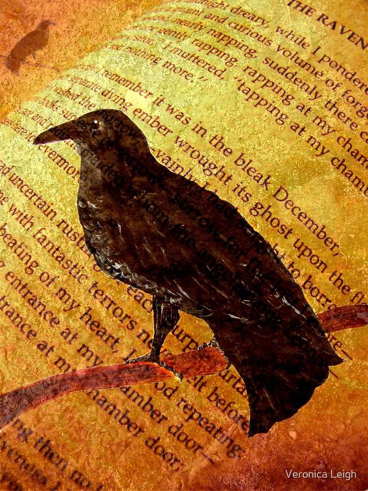 Raven by Veronica Schultz