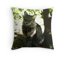 Mr. Kitty talking Throw Pillow