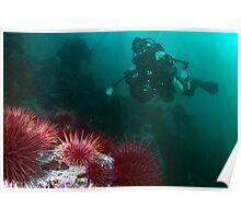 Undersea Explorer Poster