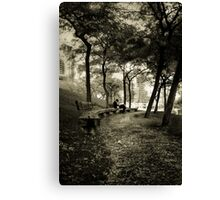 Afternoon in the Park Canvas Print