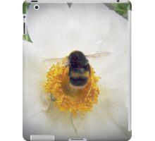 Nectar Hunter iPad Case/Skin