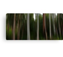 Forest of the Eucalypts Canvas Print