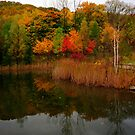 #3 in My Peaceful Series.. of Fall.. by Larry Llewellyn