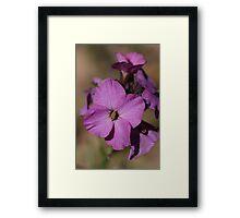 Purple pattern Framed Print