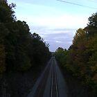 The Tracks by Jaclyn Hughes