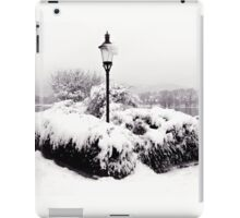 Snowy Lamp Post By The River Danube iPad Case/Skin
