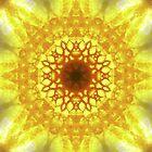 Blazing Sun by Rhonda Strickland