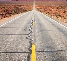 Open Road in the Monument Valley by Giorgio Fochesato
