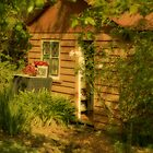 Wooden Hut, Ford House, Bridgetown, WA by Elaine Teague