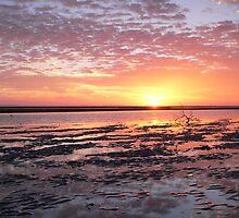 Nudgee Beach Winter Sunrise by Olivia  Gray