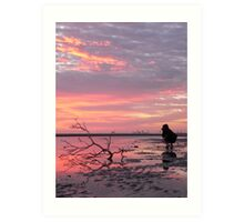 Nudgee Dawn - Photo shoot Art Print