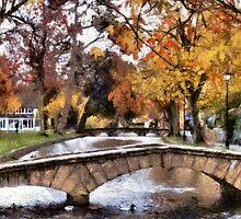 autumn colour by cynthiab