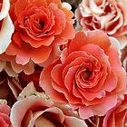 Group of Reddish Roses by Harvey Schiller