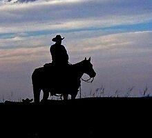 Skyline Cowboy by Whitney Jacobs