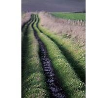 Path to Nature Photographic Print