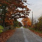 Another country road in the fall by mltrue