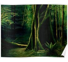 Rainforest Alone Poster