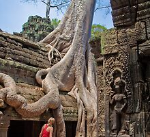 Cambodia. Angkor Thom. Giant Tree embracing Temple. by vadim19