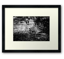 The antique chair under the tree in black and white Framed Print