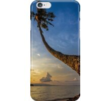 The curve of coconut tree iPhone Case/Skin