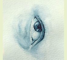 Blue Eye Looking Left by random1za