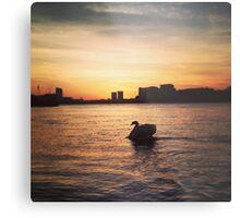 Greenwich sunset Metal Print