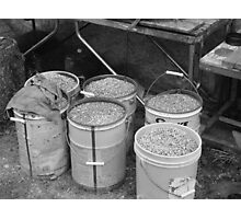 Gravel pails waiting to be used Photographic Print
