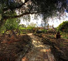 Shaded Pathway by Garry Quince