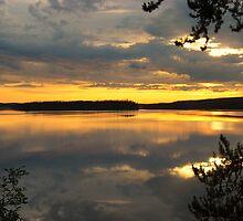 Golden Horizon by McTavish