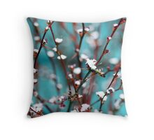 spring snow on barberry Throw Pillow