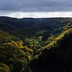 Rouvre Gorge - Autumn 2 by WebVivant