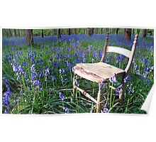 Bluebell Wood Poster