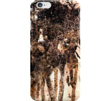 Wild Horses iPhone Case/Skin